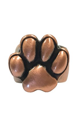 3D Stethoscope Jewelry - Antique Copper Paw Image