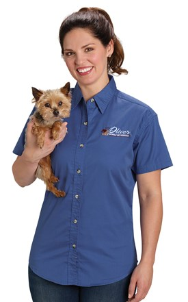 Women's Stain Resistant Twill Shirt Image