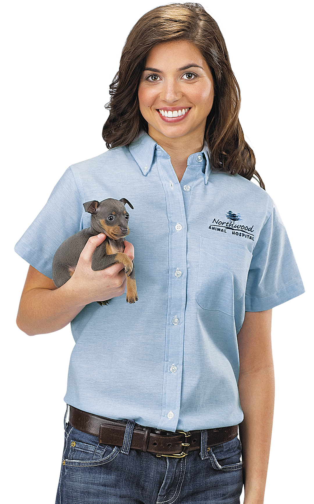 Button Up Shirts By Veterinary Apparel Company Veterinary Apparel