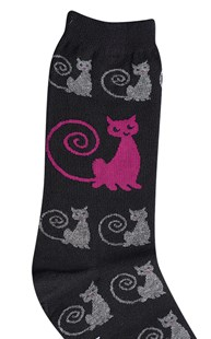 Footwear-Socks |  | Animal Socks Curly Cats
