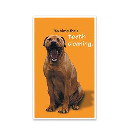 400 Teeth Cleaning 4-Up Postcards Image