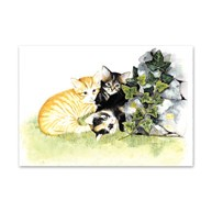 Clearance |  | 25 Three Kittens Note Cards