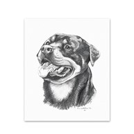 Clearance-RxSupplies |  | 5 Rottweiler Note Cards