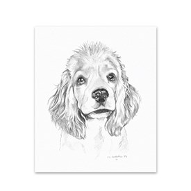 5 Cocker Spaniel Note Cards Image