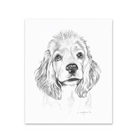 Clearance |  | 5 Cocker Spaniel Note Cards