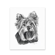 Clearance-RxSupplies |  | 5 Yorkshire Terrier Note Cards