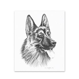 5 German Shepherd Note Cards Image