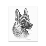 Clearance |  | 5 German Shepherd Note Cards