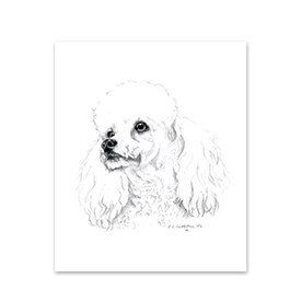 5 Poodle Note Cards Image