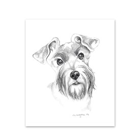 5 Schnauzer Note Cards Image