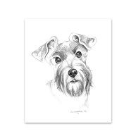 Clearance |  | 5 Schnauzer Note Cards