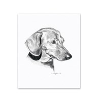 Clearance |  | 5 Dachshund Note Cards