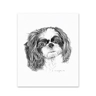 Clearance-RxSupplies |  | 5 Shih Tzu Note Cards