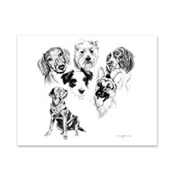 Clearance |  | 5 Dogs Note Cards