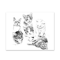 Clearance |  | 5 Cats Note Cards