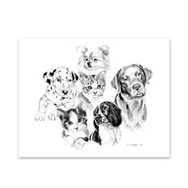 5 Dogs and Cats Note Cards Image