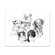 Clearance |  | 5 Dogs and Cats Note Cards
