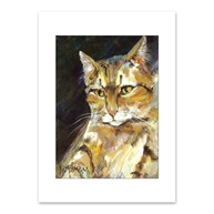 Rx-Supplies-Client-Communication-Notecards |  | Premium Folding Note Cards Cat
