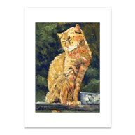 Rx-Supplies-Client-Communication-Notecards |  | Premium Folding Note Cards Sitting Cat