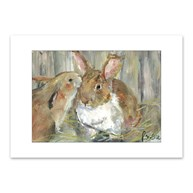 Rx-Supplies-Client-Communication-Notecards |  | Premium Folding Note Cards Bunny