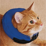 Surgical-Accessories-E-Collars |  | Kong Cloud - X Small