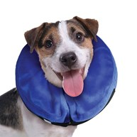 Surgical-Accessories-E-Collars |  | Kong Cloud - Small
