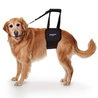 Surgical-Accessories-MobilityHarness      Ginger Lead Large Female