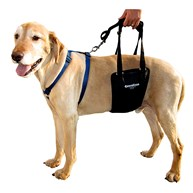 Surgical-Accessories-MobilityHarness      Ginger Lead Medium (Large Male)