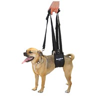 Surgical-Accessories-MobilityHarness |  | Ginger Lead Small Female