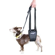 Surgical-Accessories-MobilityHarness |  | Ginger Lead Small Male