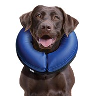 Surgical-Accessories-E-Collars |  | Kong Cloud - Large